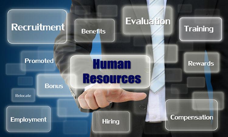 Công việc nhân sự gồm những công việc nào